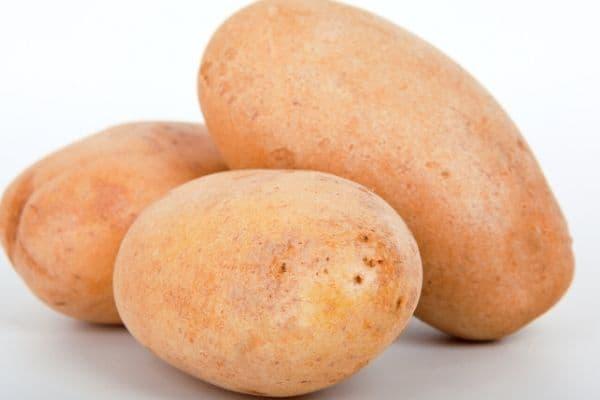 potato as cheap grocery list item